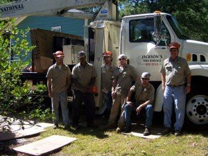 About Jackson's Tree Service, LLC